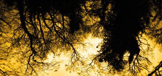David Holmes - late night tales-altroverso