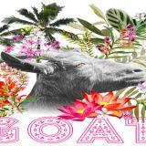 goat-festival-2017-altroverso